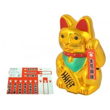 Kot chiński - złoty